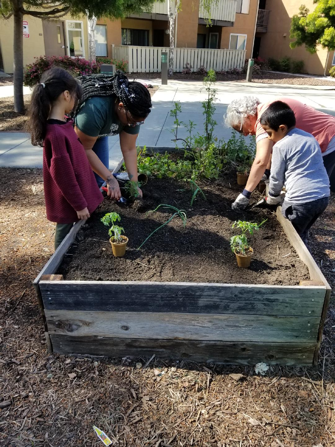 Elder and youths at Community Justice Garden, Ashland Apartments