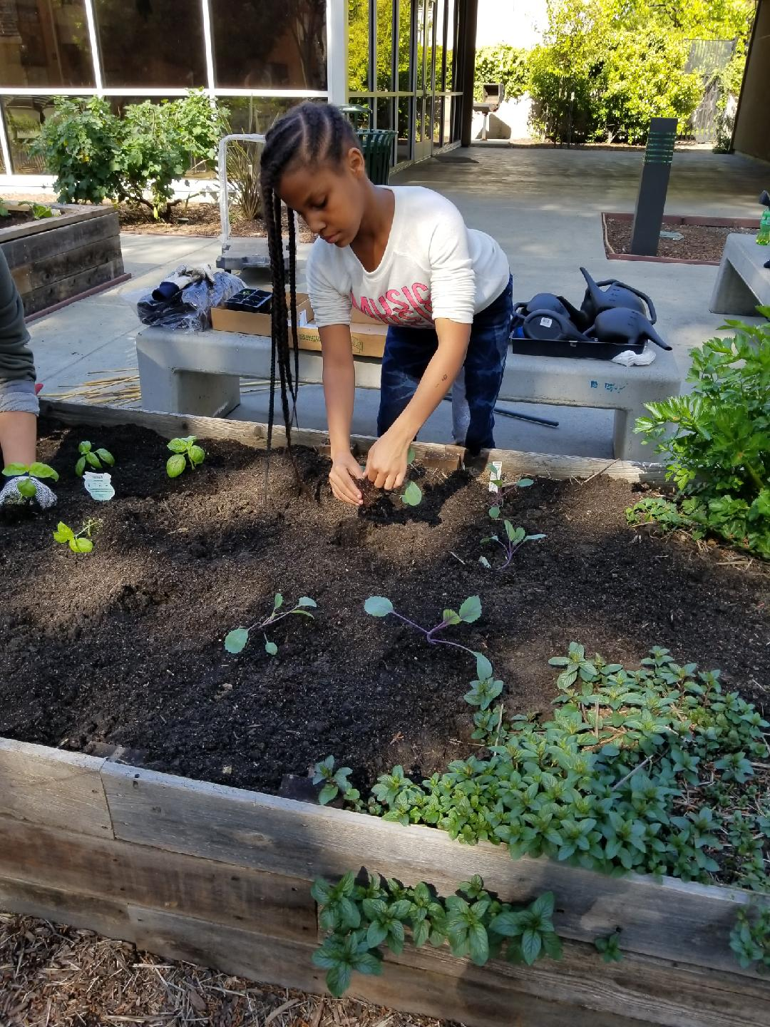 Young girl at Community Justice Garden, Ashland Apartments