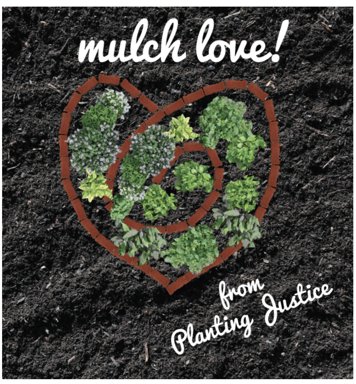 Want to work with Planting Justice? image asset