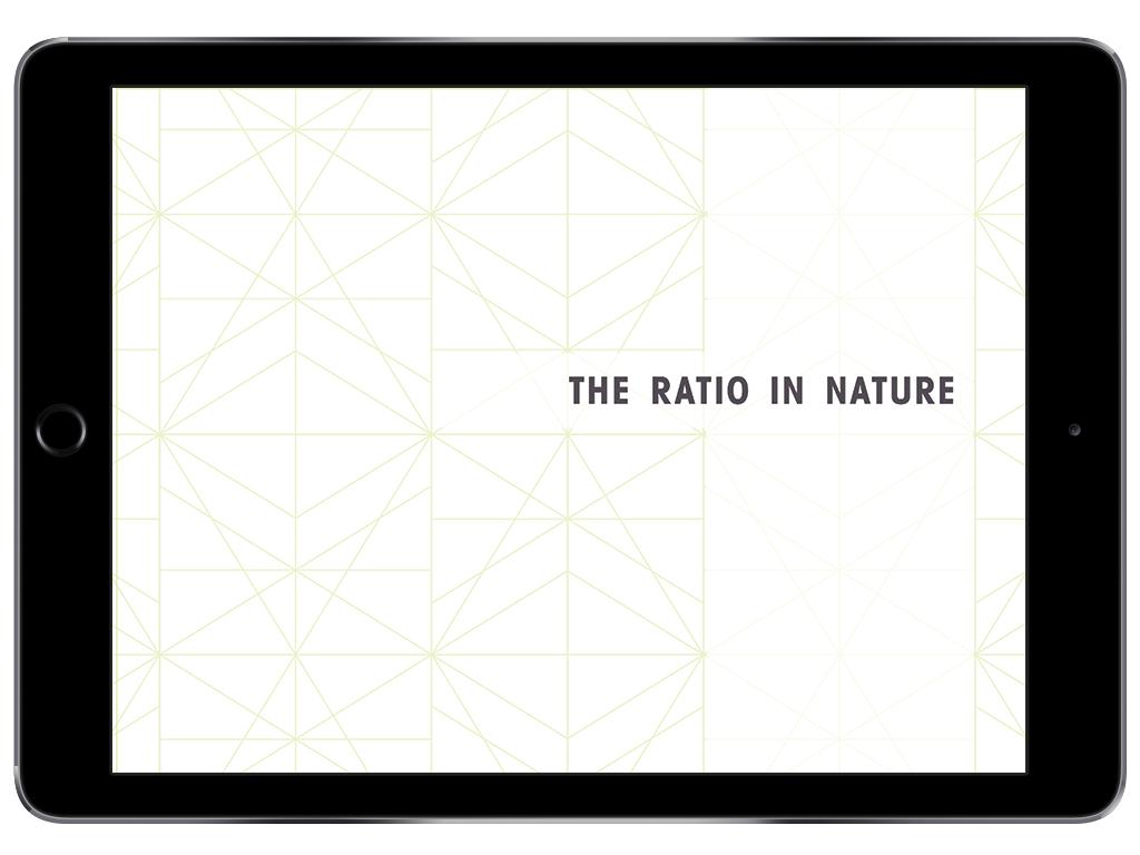nature_1.jpg