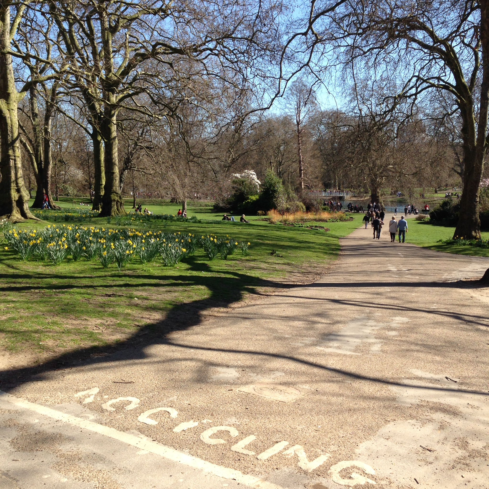 St. James Park. Such a shame we couldn't ride around in there.