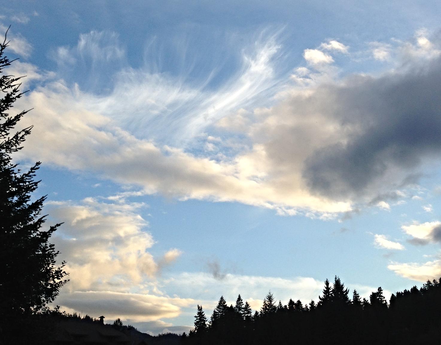 whistler sky