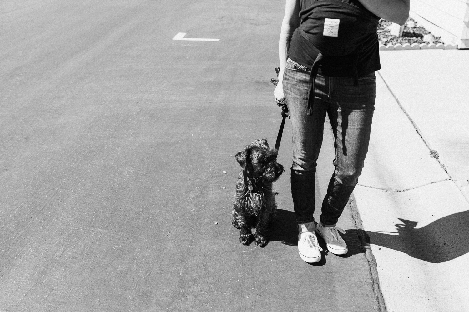 candid-black-and-white-photo-of-mom-walking-dog-poway-ca