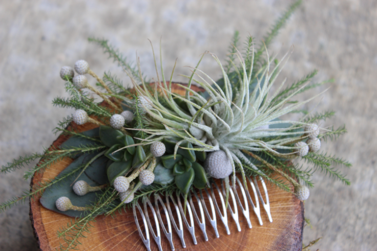 modern fresh floral comb with air plants and succulents gray green