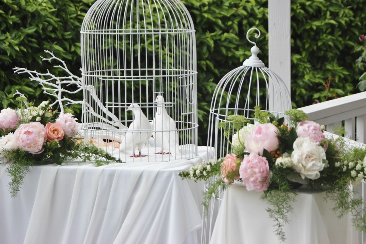 wedding doves ceremony decor gazebo drape bird cages
