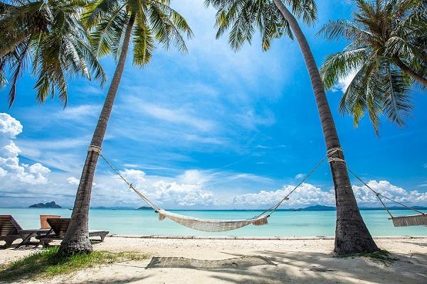 phi-phi-island-village-beach-resort-aims-to-reduce-carbon-footprint-2.jpg