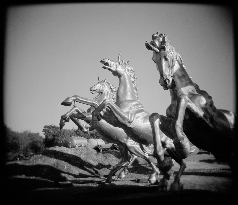 Junkyard Unicorns