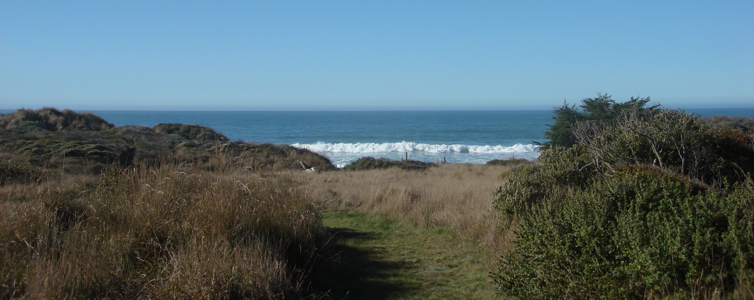 AWE seminars take place in the healing environment of The Sea Ranch, CA.