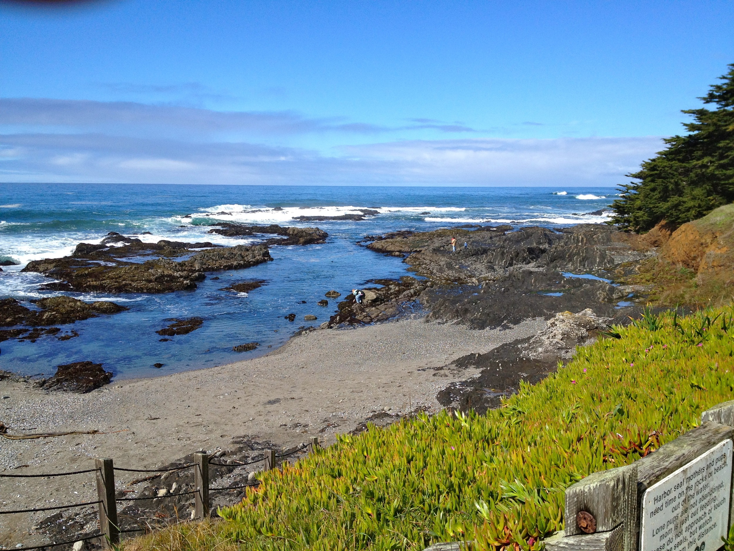 Shell Beach, walk 15 min N from Casa Pacis
