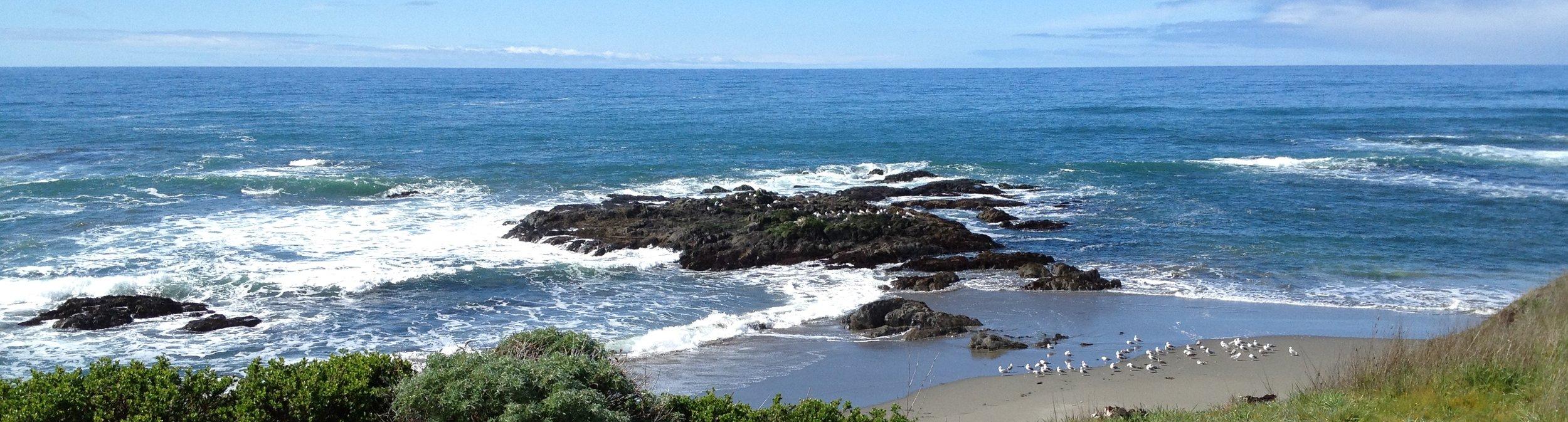 At Sea Ranch, California