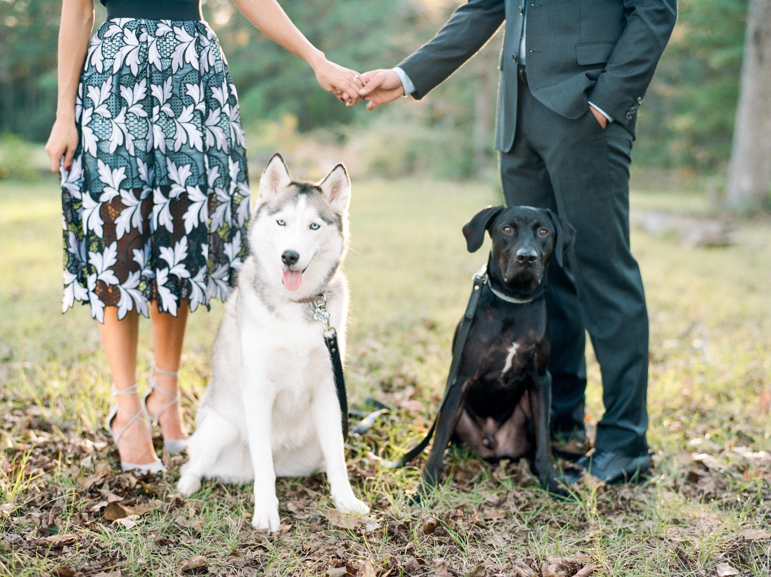 dana-fernandez-photography-houston-portrait-photographer-wedding-engagements-lance-kara-mccullers-houston-astros-film-photographer-9.jpg