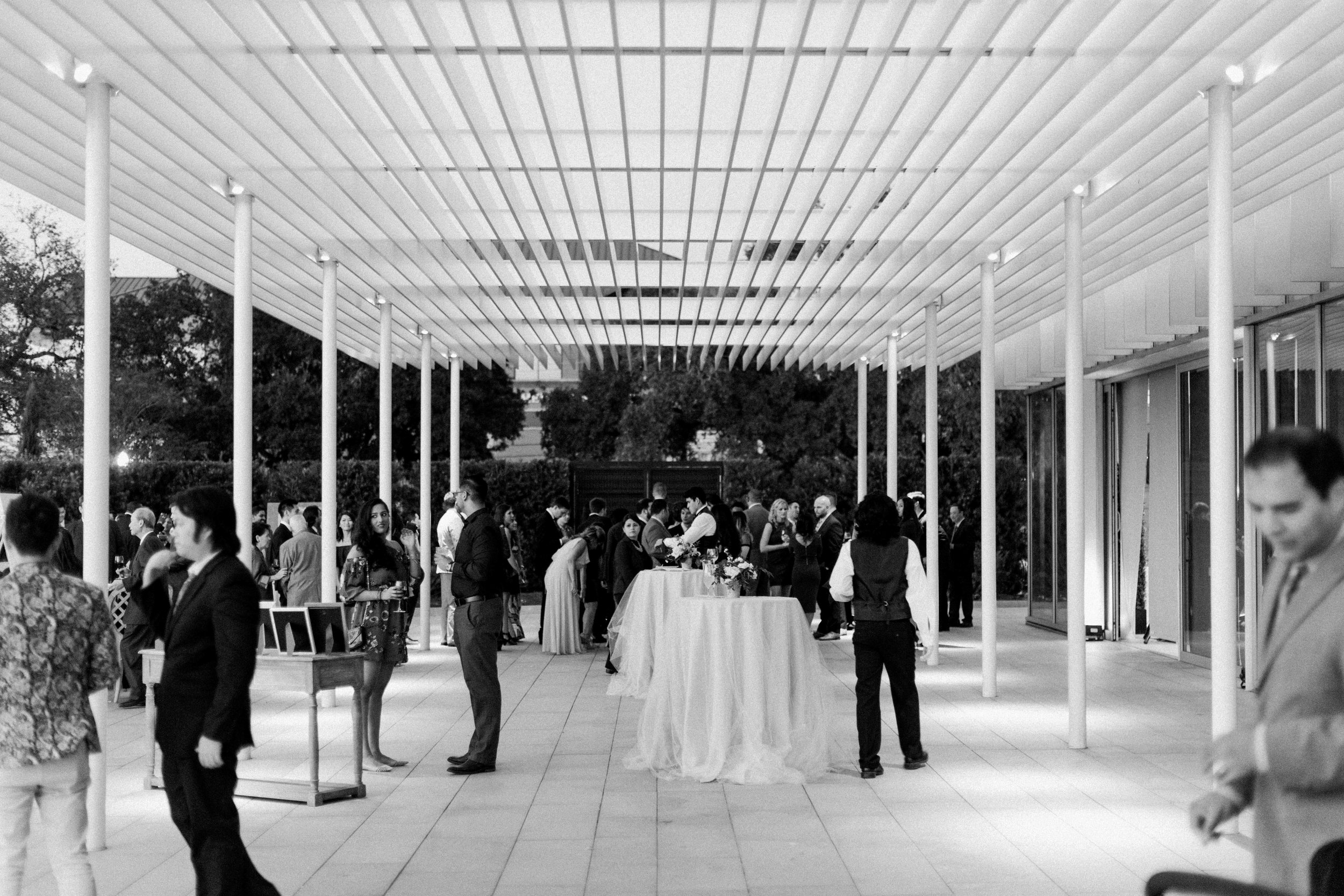 Martha-Stewart-Wedding-Dana-Fernandez-Photography-Josh-Texas-Film-Houston-Wedding-Fine-Art-Photographer-McGovern-Centennial-Gardens-Top-Best-49.jpg