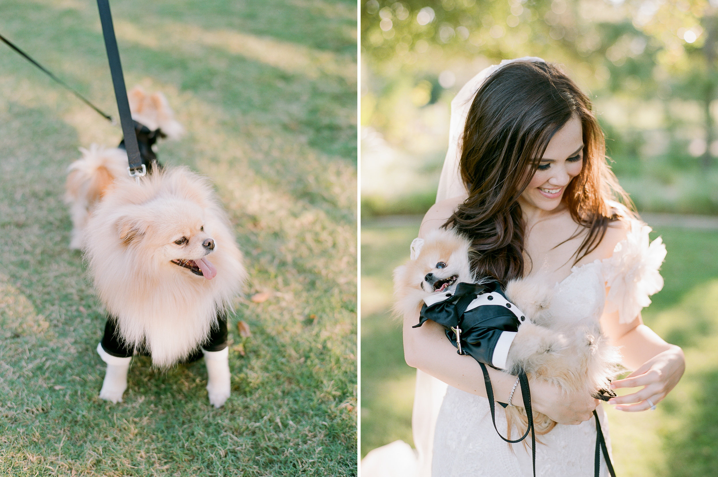 Martha-Stewart-Wedding-Dana-Fernandez-Photography-Josh-Texas-Film-Houston-Wedding-Fine-Art-Photographer-McGovern-Centennial-Gardens-Top-Best-308.jpg