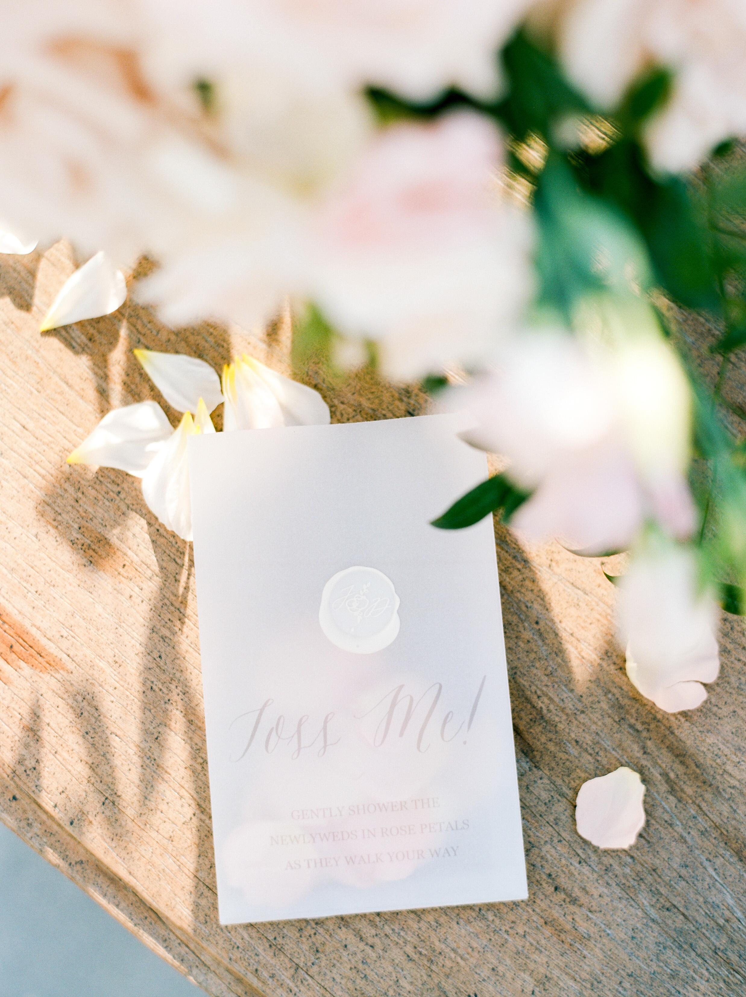 Martha-Stewart-Wedding-Dana-Fernandez-Photography-Josh-Texas-Film-Houston-Wedding-Fine-Art-Photographer-McGovern-Centennial-Gardens-Top-Best-80.jpg