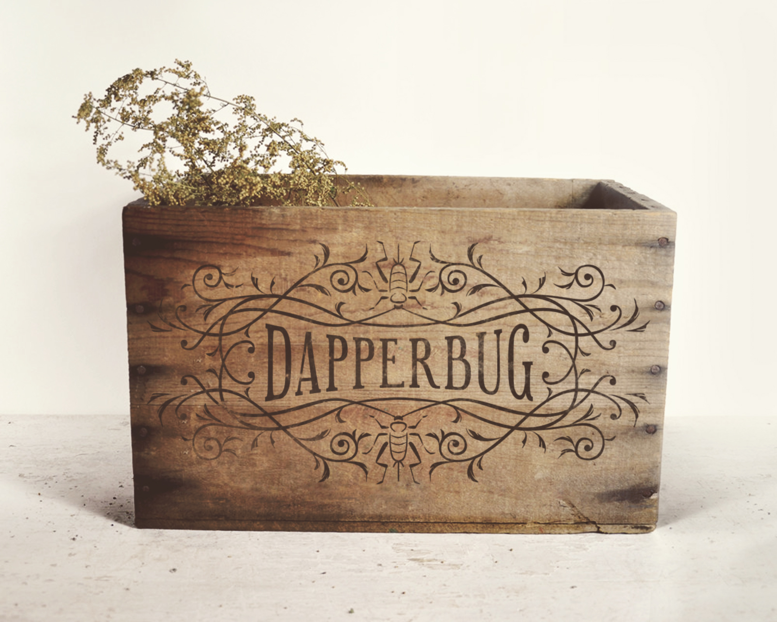 Dapperbug Logo Mockup