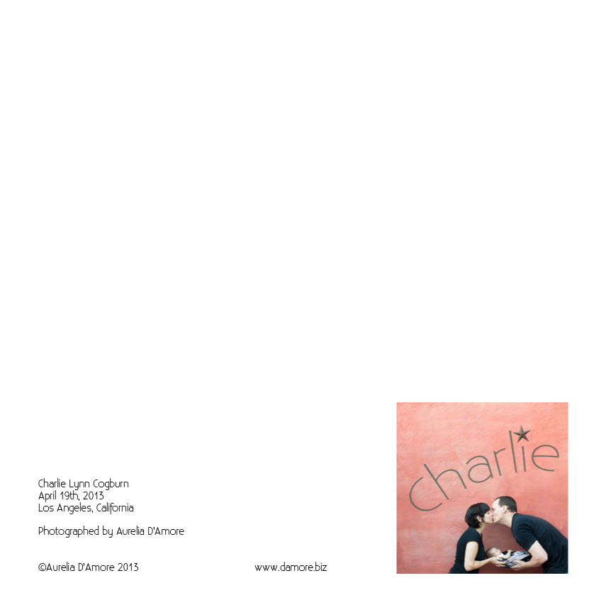 Charlie_D1 Page 63.jpg