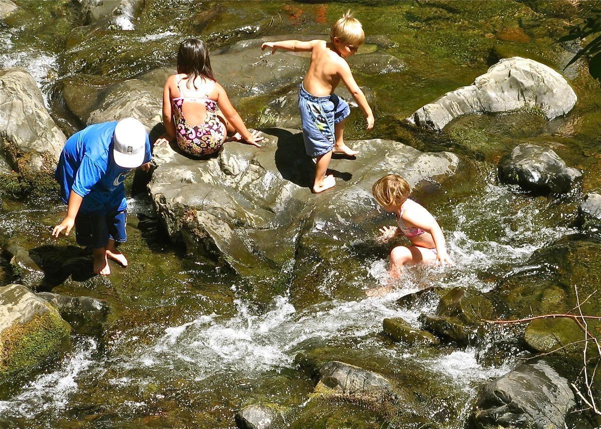 Summer Fun in the Creek