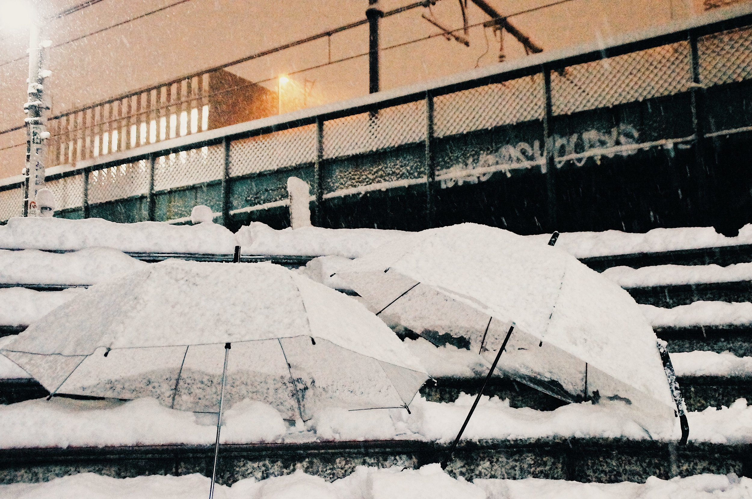 大雪の中で冒険してみたり
