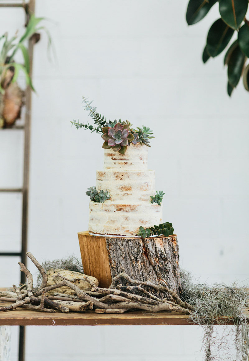 Finch and Oak _ Gold Coast wedding photographer02.jpg