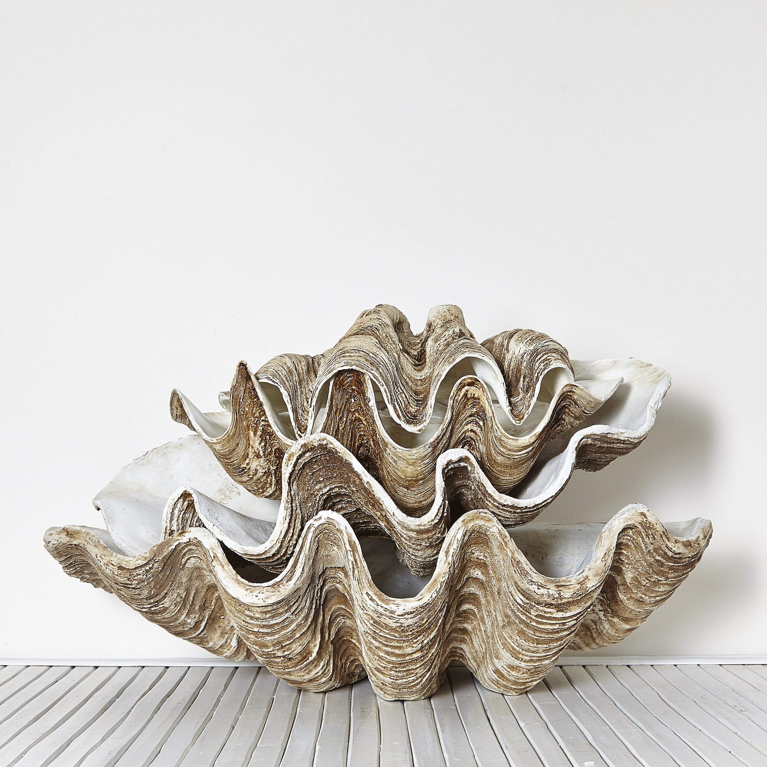 Vintage Polyresin Clam Shells   Small, medium and large Available in white and natural $30 each