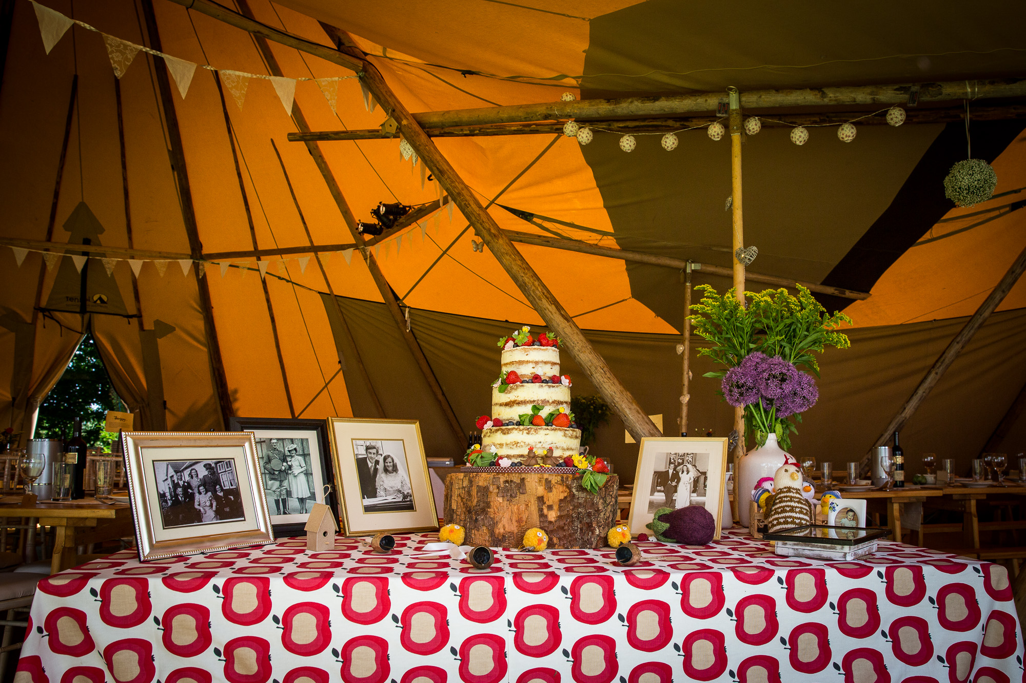 clairebyrnephotography-DIY-tipi-backyard-fun-wedding-60.jpg