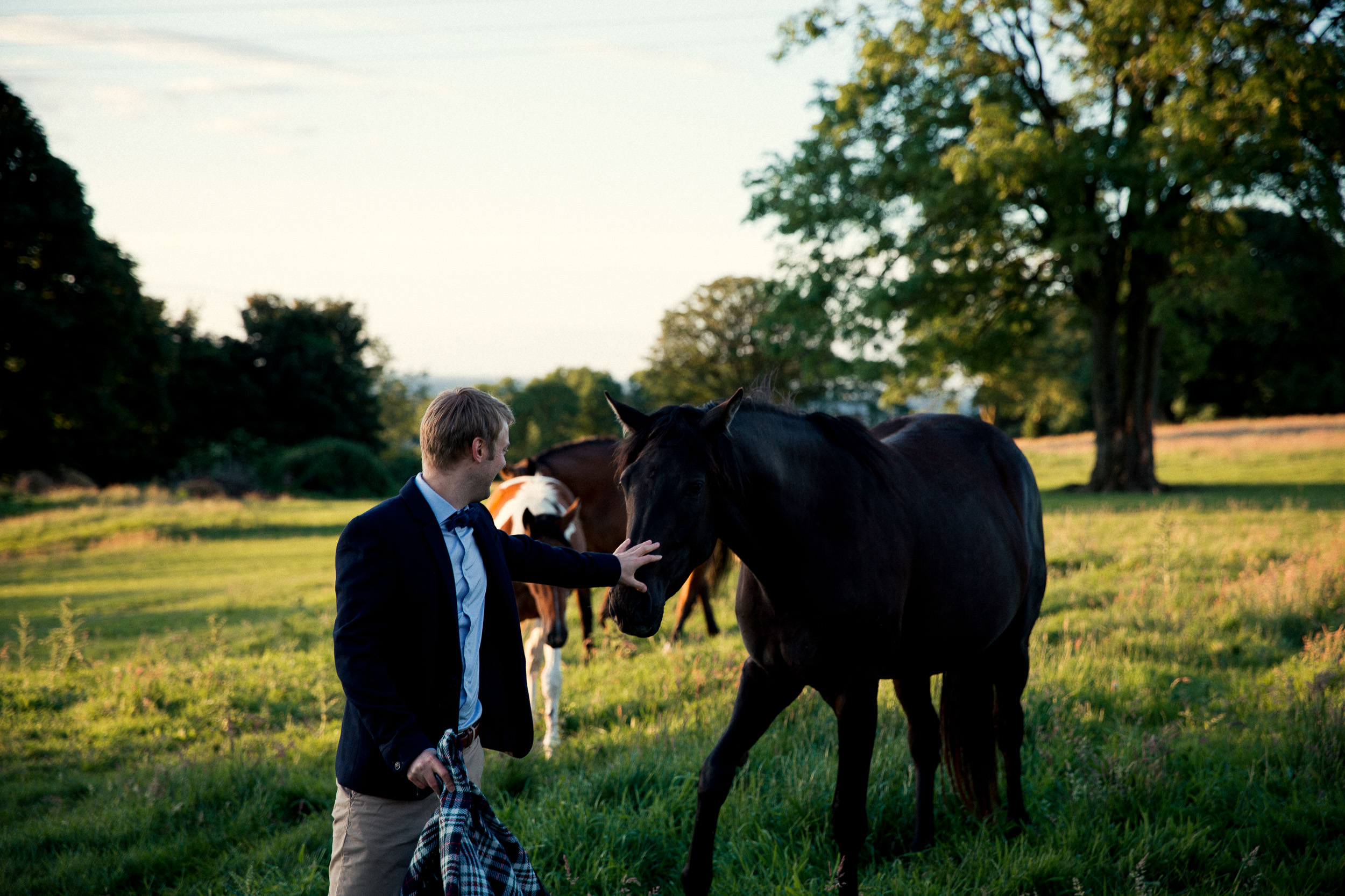 clairebyrnephotography-wedding-photography-ireland-engagement-sunset-farm-horses-58.jpg