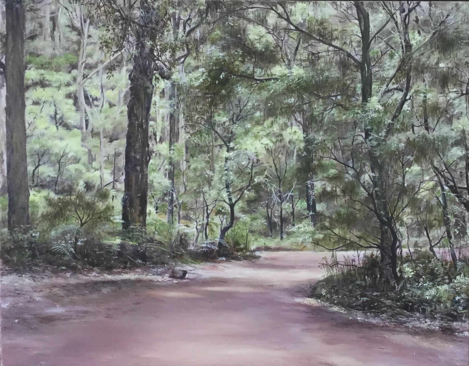 BORANUP FOREST
