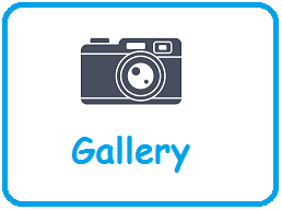 Our Gallery2.png