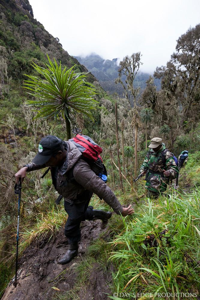 """Kenyan alpinist and climbing guide James """"KG"""" Kagambi in Rwenzori Mountains National Park, Uganda."""