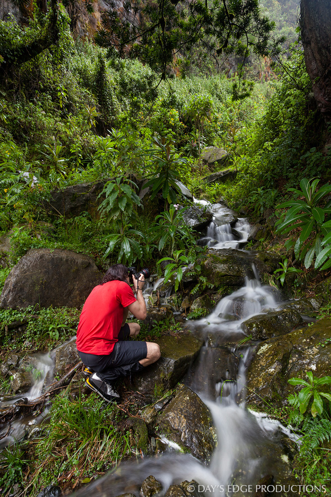 Biologist and photographer Nathan Dappen takes a photo of a small stream in Rwenzori Mountains National Park, Uganda.