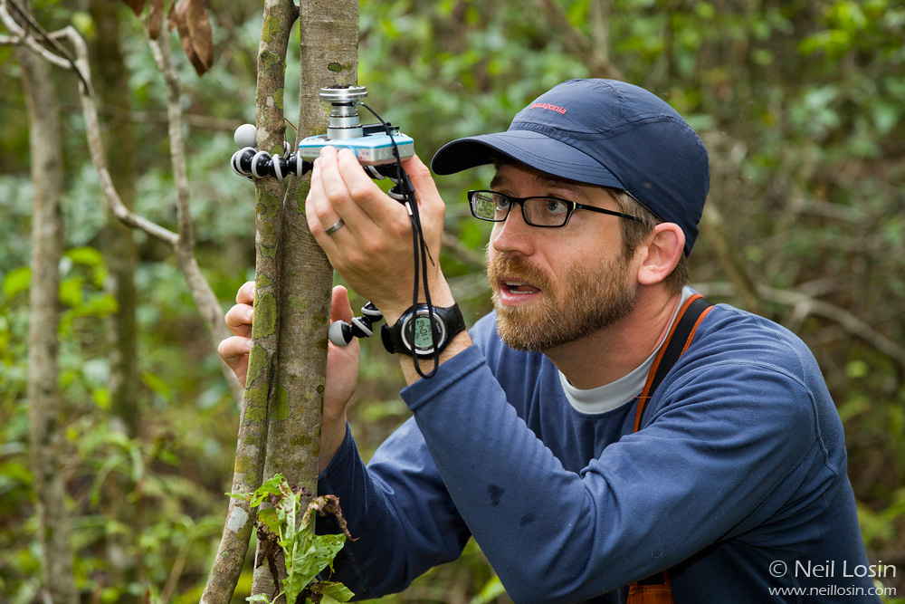 University of Rhode Island professor Jason Kolbe takes a fisheye photograph to measure canopy cover in a study of habitat use in invasive anoles in Florida.