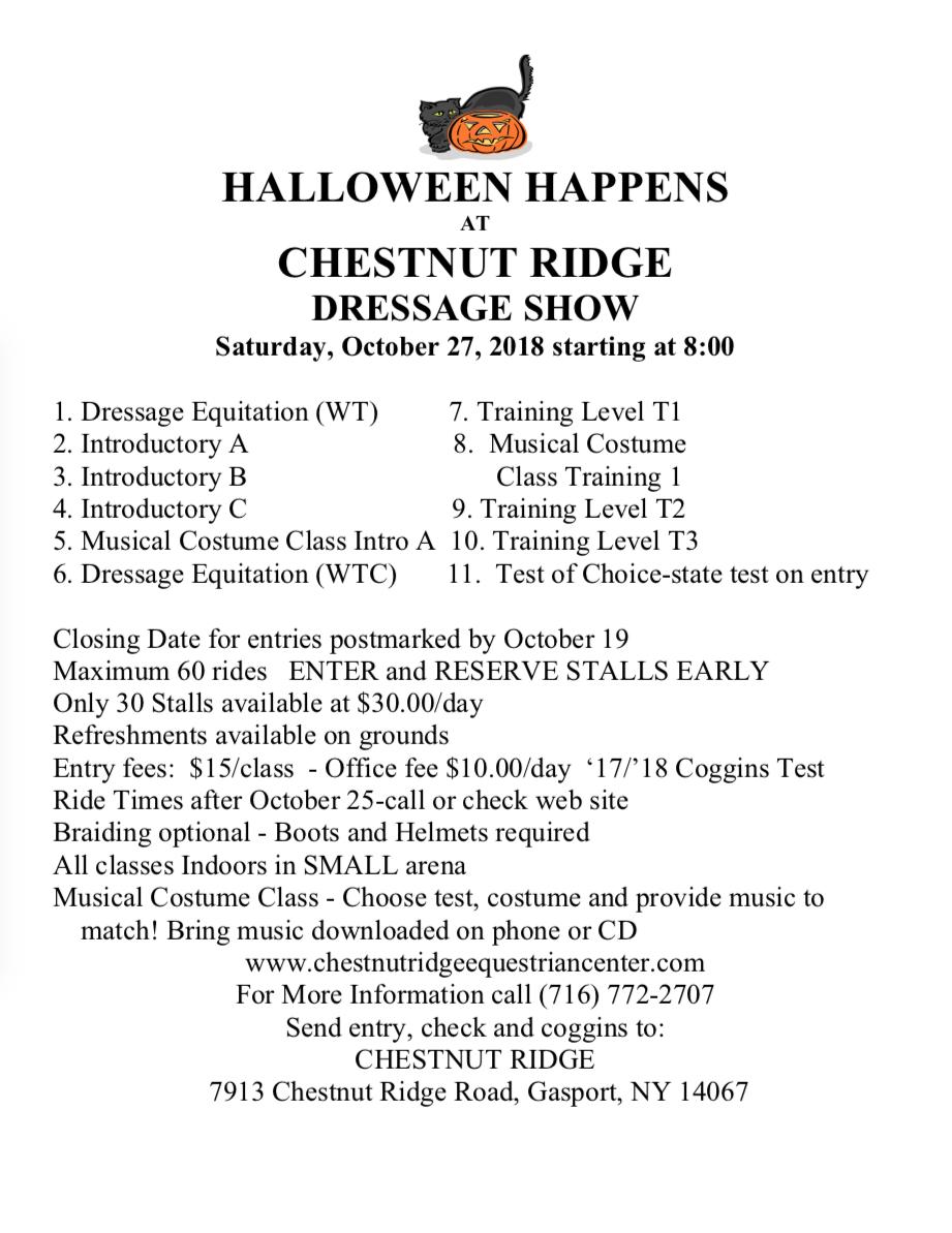 HalloweenDressage.PNG