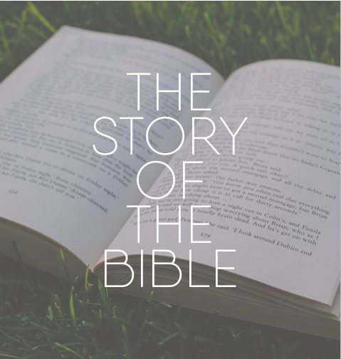 The Story of the Bible While the content of the Bible is the most important thing to consider, the story of how we got the Bible is truly remarkable. In this series of lessons, we'll examine in detail the story of the Bible and we'll see how God delivered the text we study and revere.