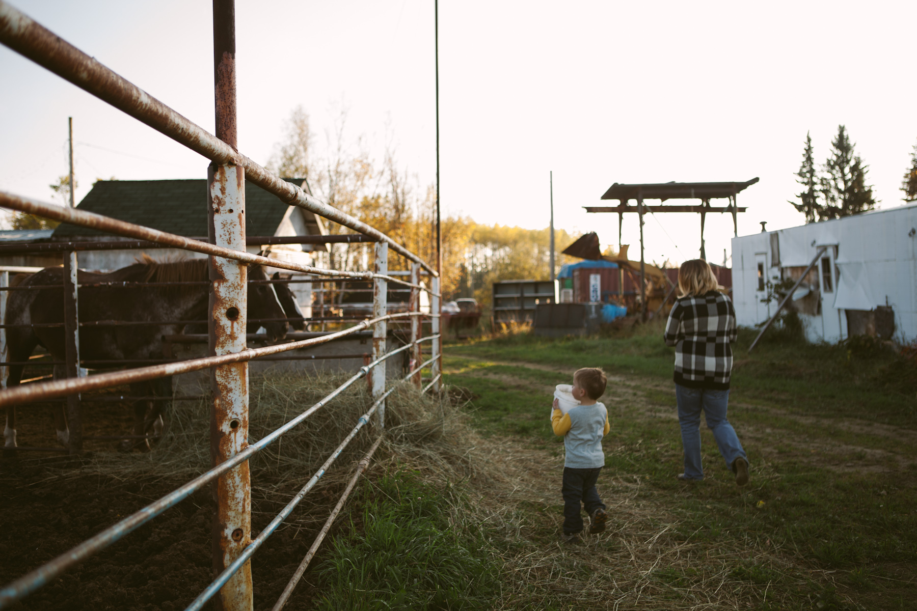 AT THE FARM ©MELISSAWEICKER