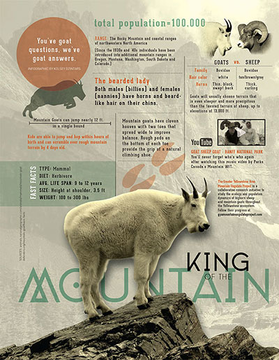 mountaingoat_infographic_WEB.jpg