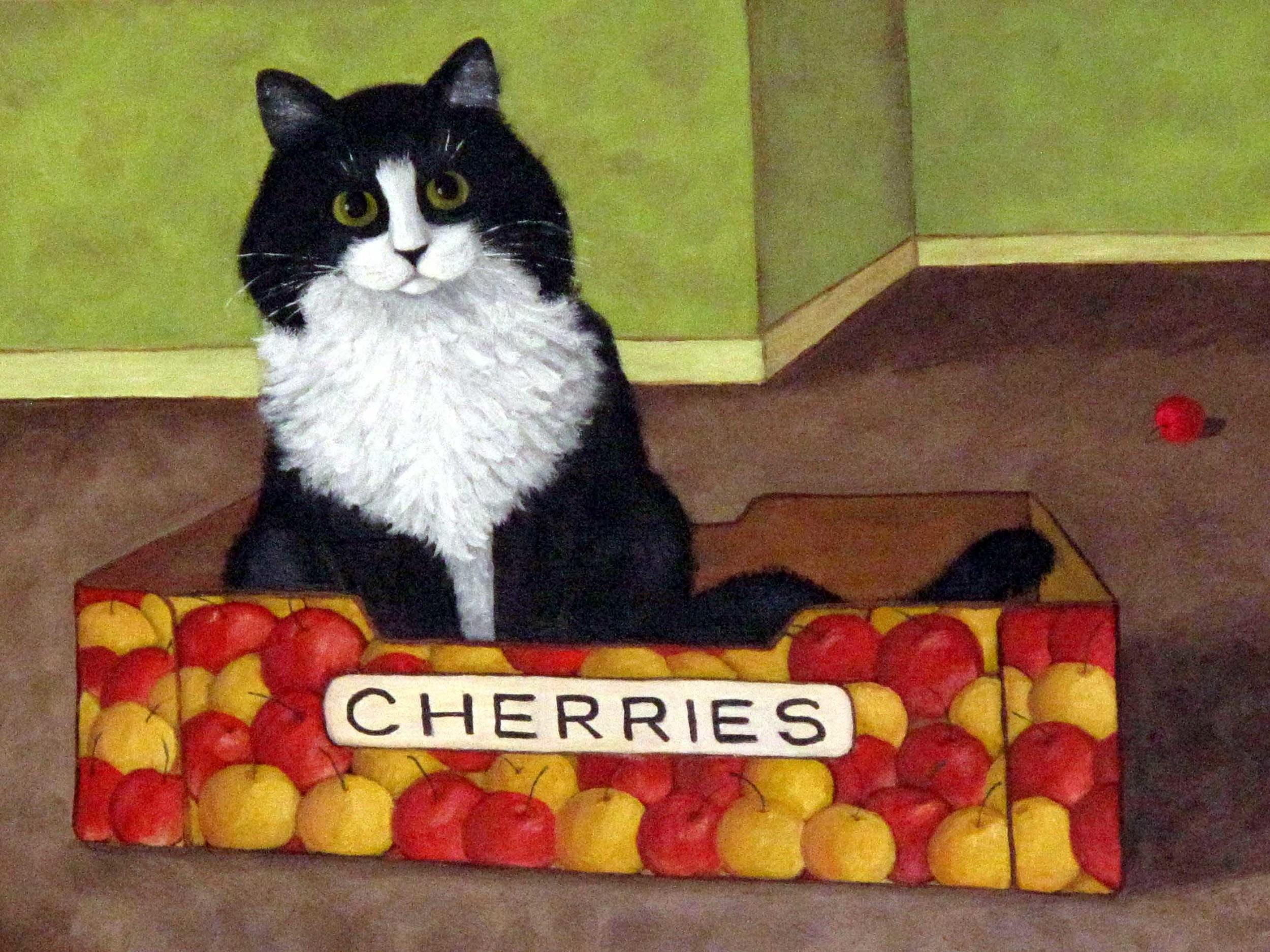 Cherry+Cat.jpg
