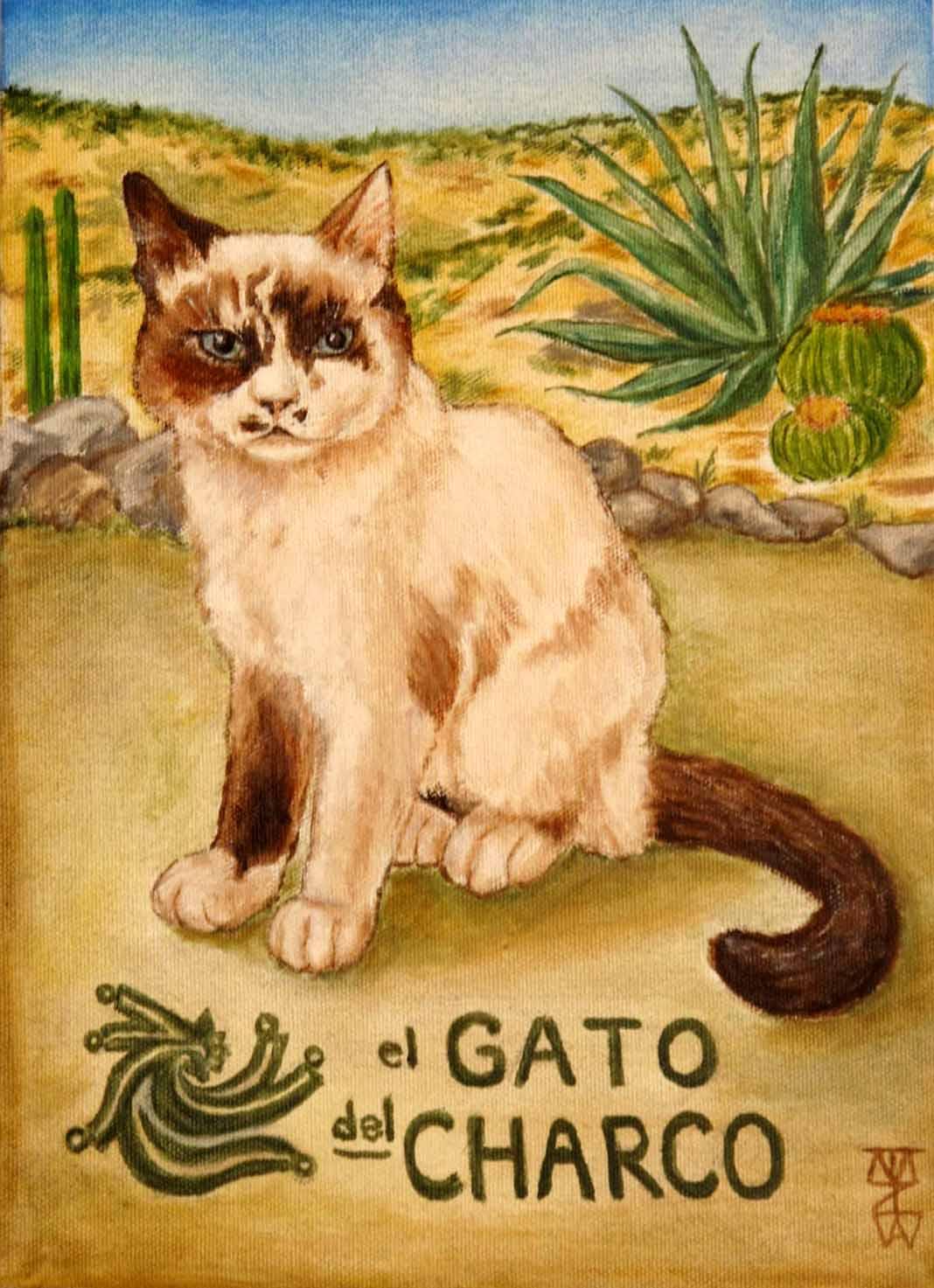 Gato+del+Charco.jpg