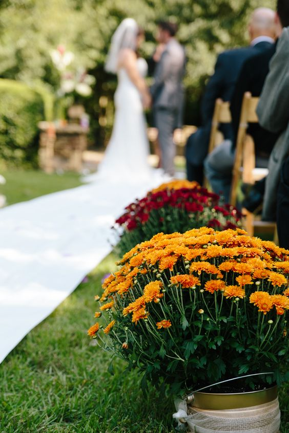 Mums are a perfect flower to decorate your fall wedding with. They are the perfect color and are in full bloom.  Photo credit:  Deep Pearl Flowers