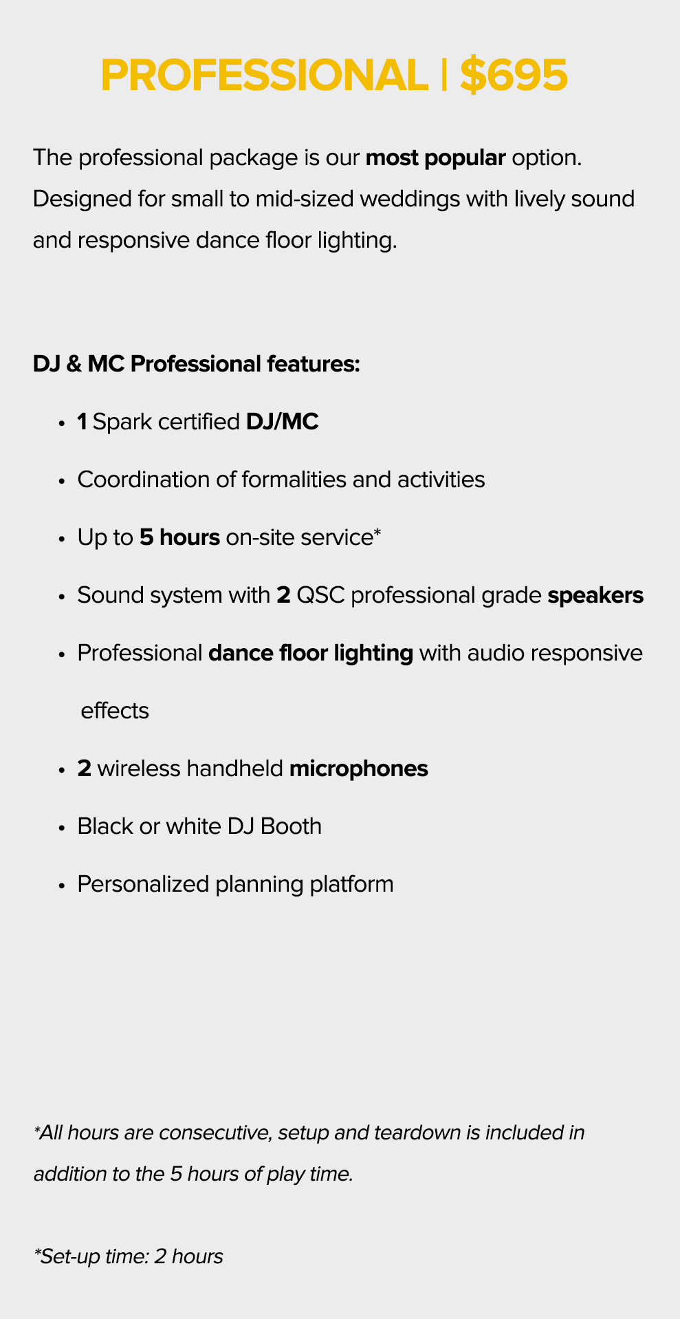 DJ-Professional-text1.jpg