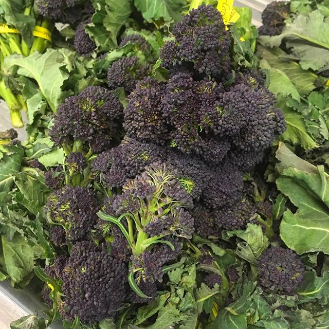 It's dreary outside but in here there are signs of spring! We've got beautiful purple sprouting broccoli, beets, head lettuce, fresh turmeric, micro greens, organic apples, organic potatoes, cabbage, onions, and more!  Oh and some delicious clam chowder to take the chill off!  See you soon.