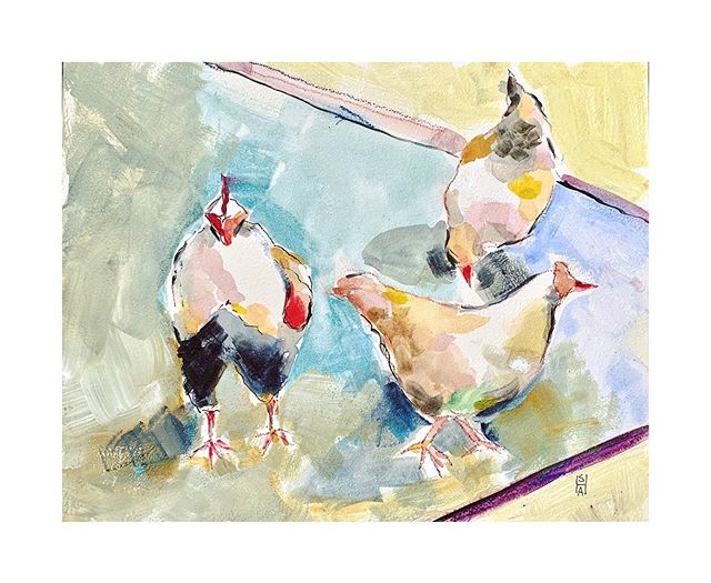 I painted these chickens a few years ago from life on a very hot July day. That first pass was in oils but I decided to use the same image and try it in gouache .... a technique I need to practice way more!  #justforfun #whimsy #gouachepainting #gouacheillustration #gouache #gouacheandwatercolor#mixedmediaart #mixedmediaartist #mixedmediaartwork #illustrations #chickensofinstagram #chickens#rooster#pleinair #pleinairpainting #pleinairartist #landscapeart #landscapepainting #whimsicalart #whimsicalpainting #watercolor_gallery #watercolors#watercolormixedmedia #drawings #markmaking#lovechickens #summeristhebest