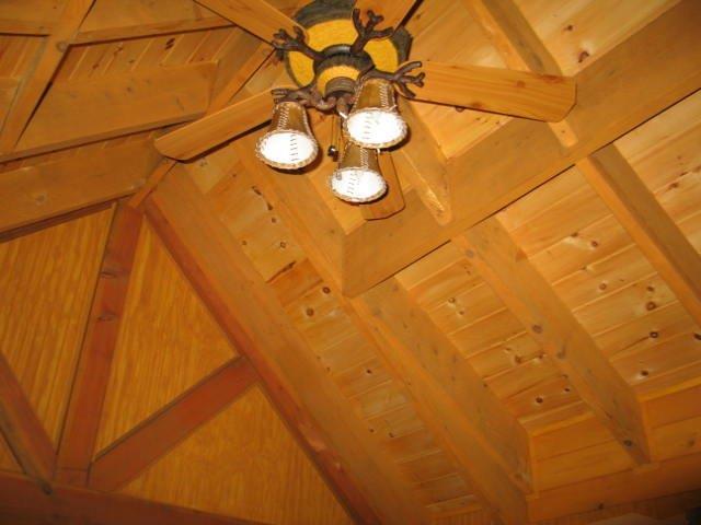 shaw h ceiling.jpg