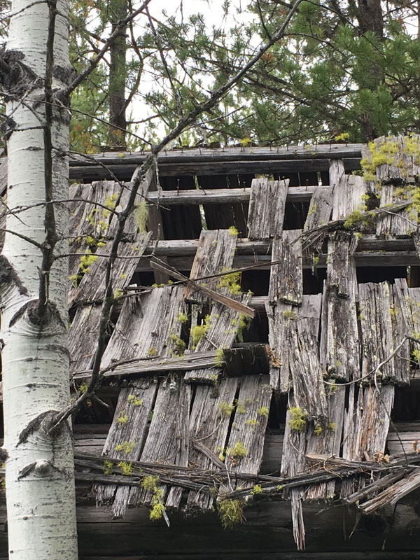 The Kintla Ranch has seen better days, and is a project on the minds of managers at the Flathead National Forest.