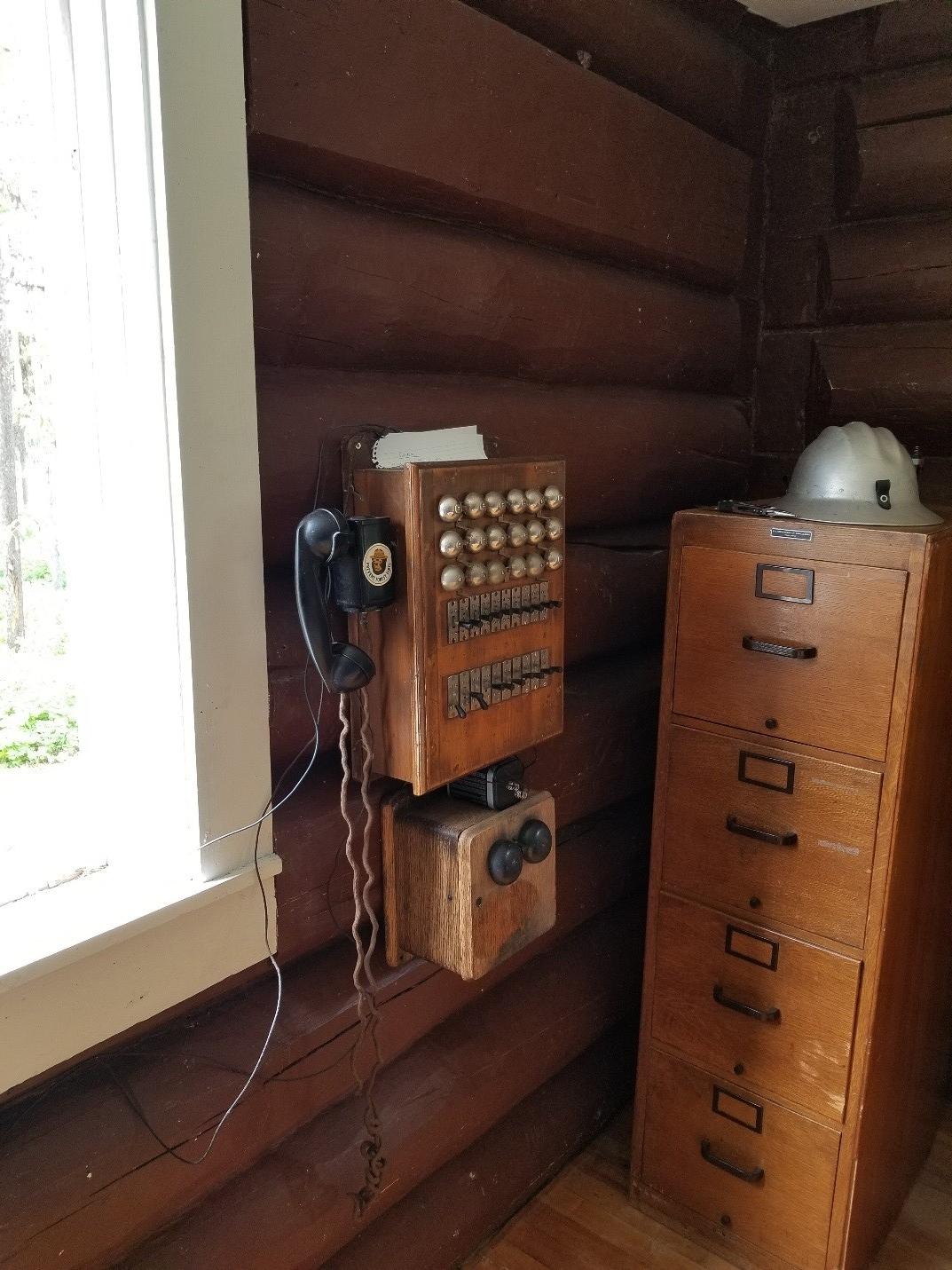 spotted bear phone.jpg