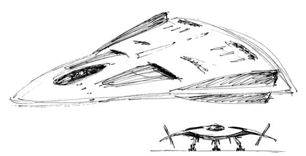 delta wing plane-websm.jpg