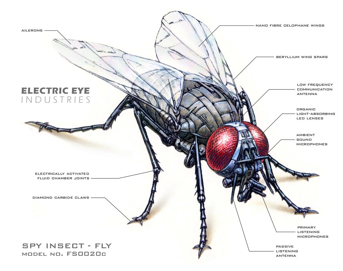 robot_fly_enhanced_web.jpg