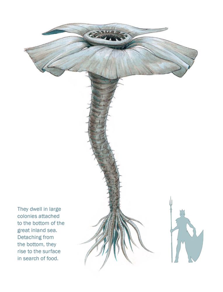sea_creature_enhanced_web.jpg