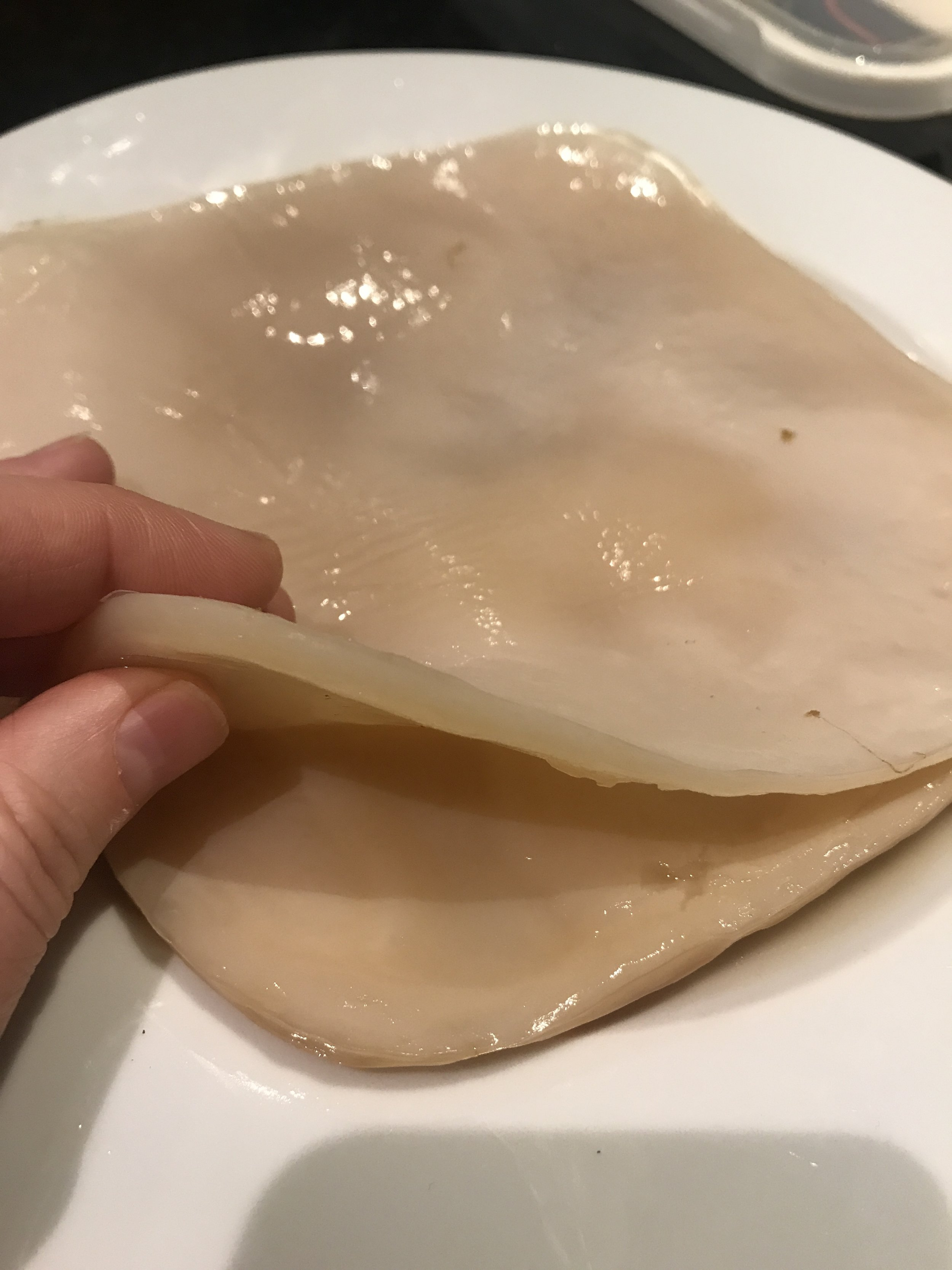 SCOBY - Mother/Child