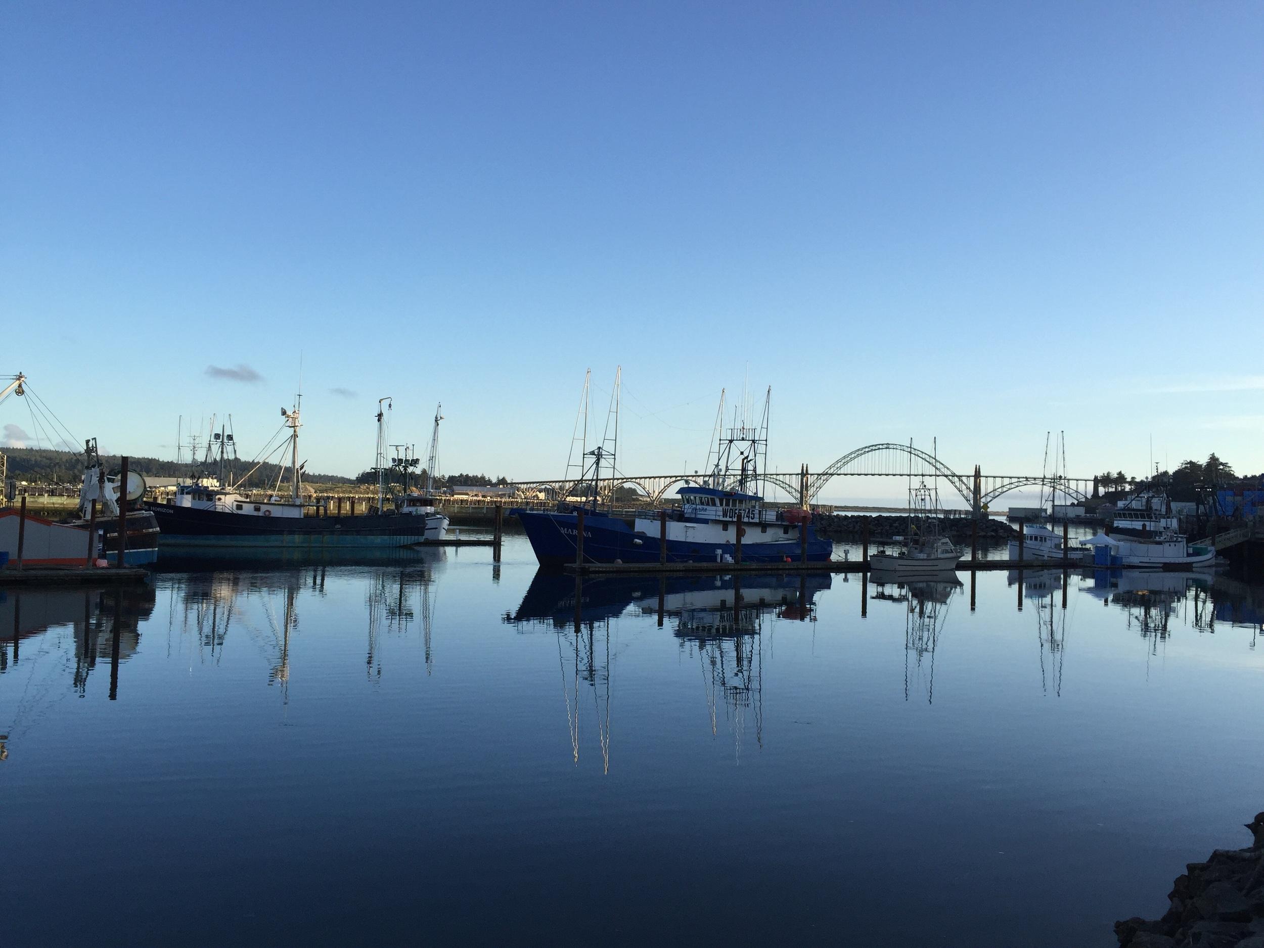 Newport Marina and bridge