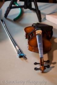 Community Music School of Ann Arbor